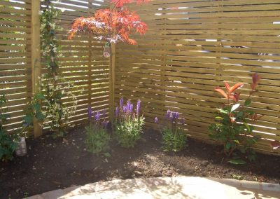 Softwood Lateral Trellis-1024x768